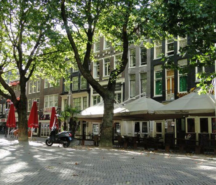 Cocos-Apartment2-amsterdam-apartment-rental